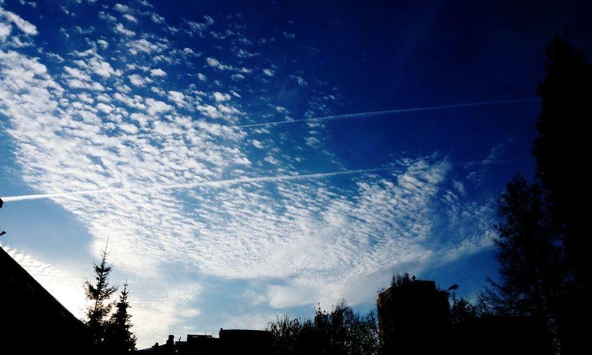 Sky Nature Blue Cloud - Sky Outdoors First Eyeem Photo