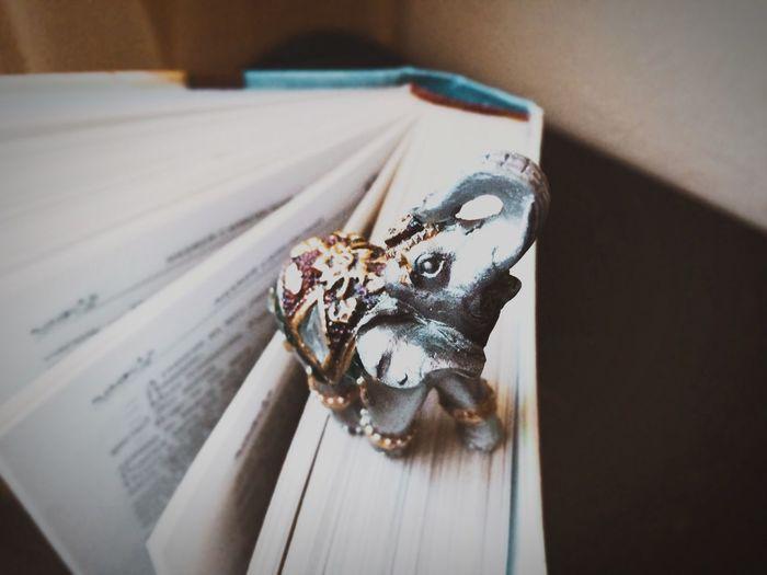 wisdom in books Lieblingsteil