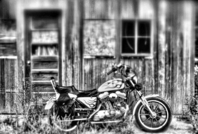 Harley Davidson motorcycle Harley Harley Davidson Sportster Harley Davidson Harleydavidson Harley4life Harley-Davidson HarleyDavidsonMotorcycles Motorcycle Photography Harleydavison Motorcycles Motorcycle Selective Focus Biker Bikers Blackandwhite Black And White Blackandwhite Photography Black And White Photography Taking Pictures Motorcyclepeople Black & White Black&white EyeEm Best Shots - Black + White America EyeEm Gallery