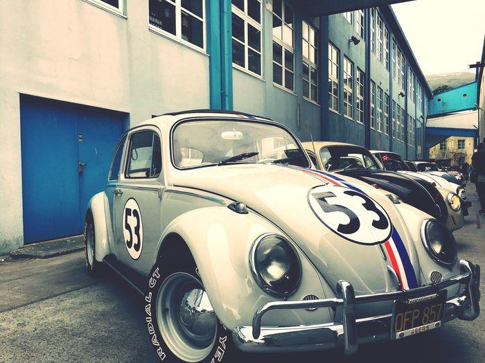 Beetle Herbie