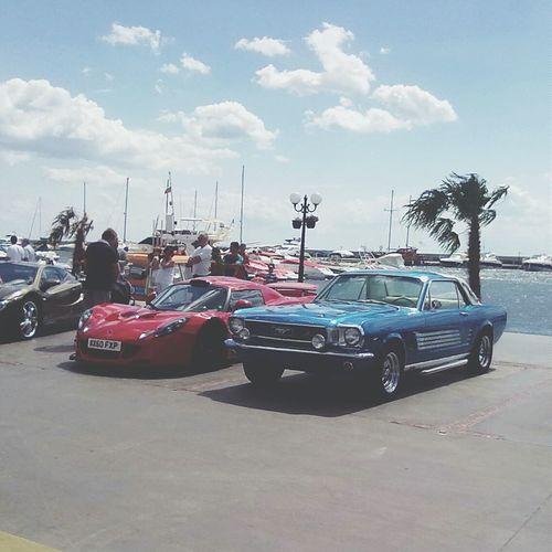 Cars Beauty Mustang Ford Mustang Fordmustang Redcar Bluecar