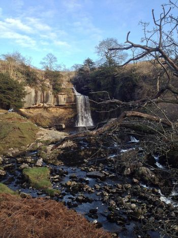 Thornton Force, shame it was such a dull day. Doesn't do it justice. Water_collection Landscape_Collection