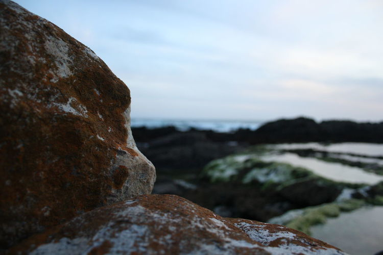 Close-up of rock by sea against sky