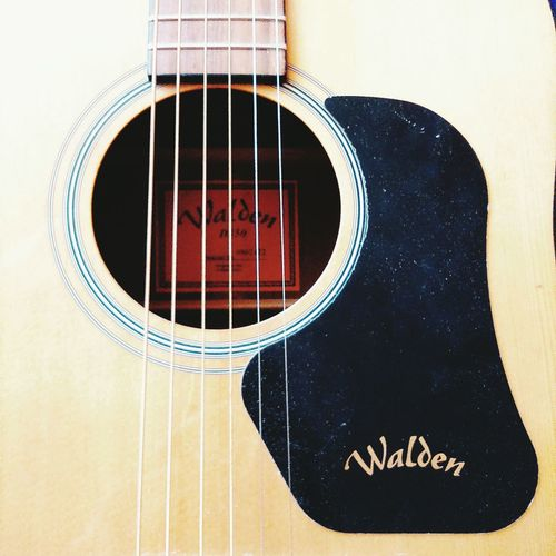 Guitar Old Guitar Music Acoustic Acoustic Guitar Russia Walden