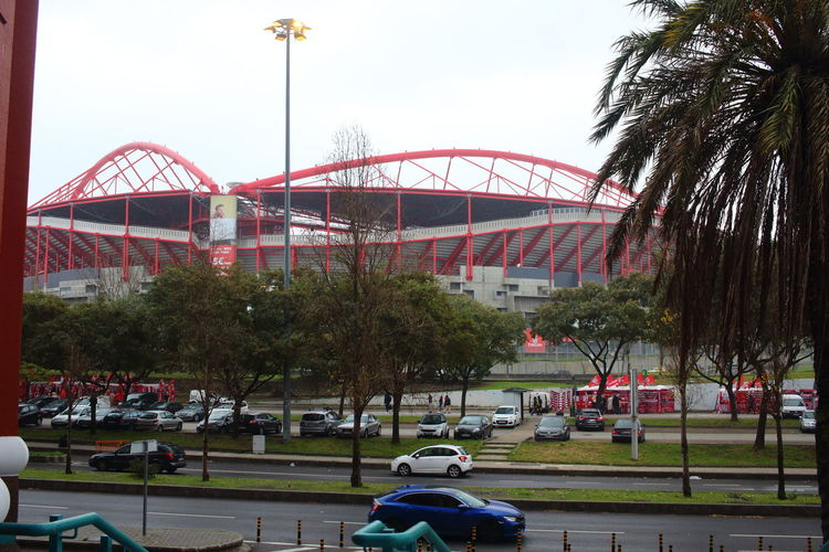 Benfica Lissabon Benfica Stadium Football Stadium Football EyeEm City Photography Lissabon, Portugal Lisbon - Portugal Lisbon Transportation Tree Architecture City Built Structure Sky Plant Street Nature People Building Exterior Day Land Vehicle Road Outdoors