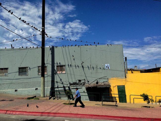Street Photography Streetphotography Walking Around The City  Tijuana NEM Architecture NEM Street Photography NEMstreet