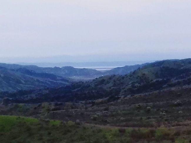 Tree Mountain Fog Beauty Sky Grass Landscape