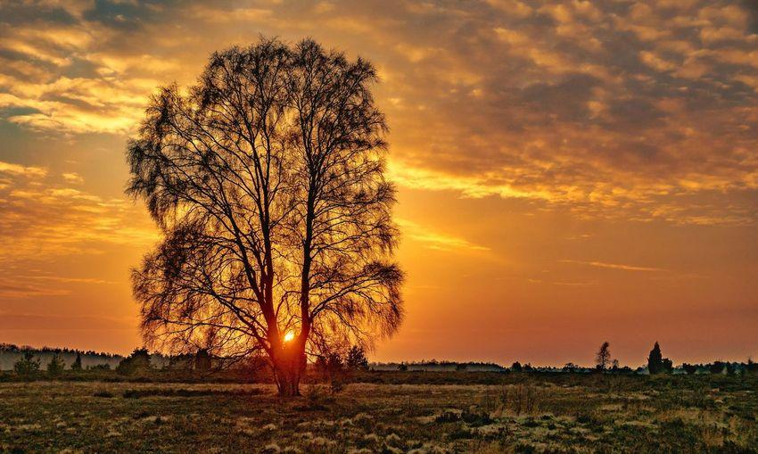 Sundown Sunsets