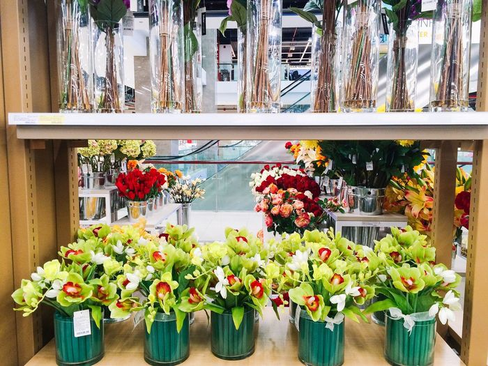 Decoration flowers in the shopping mall Flower Flowers Green Tulip Climatechange Shopping Mall Order Color Summer