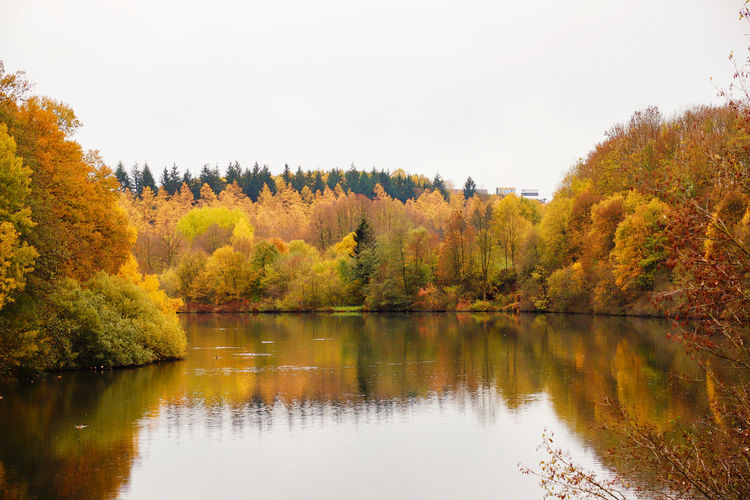 Olpe Biggesee Water Reservoir Water Lake Lake View Oberberg Nature Outdoors Autumn Autumn colors Reflection Tree Change Plant Beauty In Nature Tranquility Scenics - Nature Tranquil Scene No People