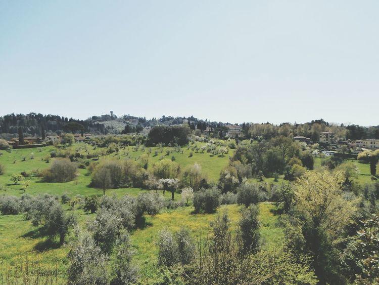 Italy❤️ Florence Boboli Garden Travel Nature