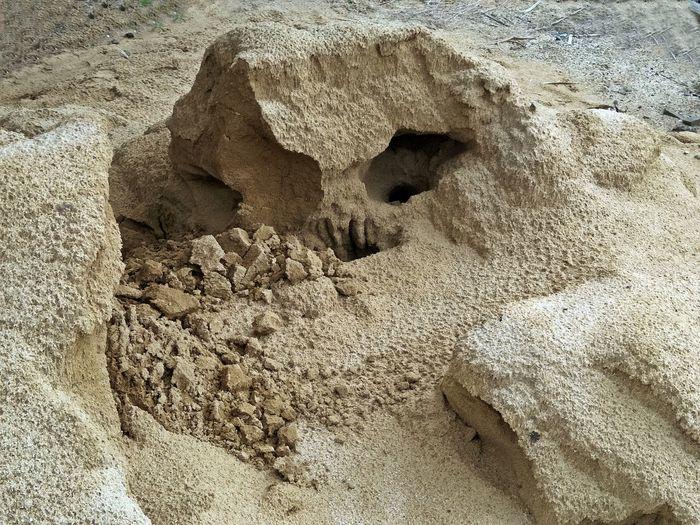 Sand Sandcastle