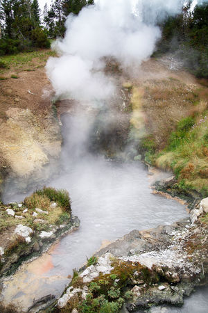 Dragon's Mouth Spring in Yellowstone National park's Mud Volcano Area, wyoming, usa Dragon's Mouth Spring Geothermal Area Mud Volcano Area Mud Volcanoes Wyoming Yellowstone Yellowstone National Park Beauty In Nature Day Environment Geology Geothermal  Geothermal Activity Heat - Temperature High Angle View Hot Spring Nature No People Physical Geography Power In Nature Smoke - Physical Structure Steam Volcanic Landscape