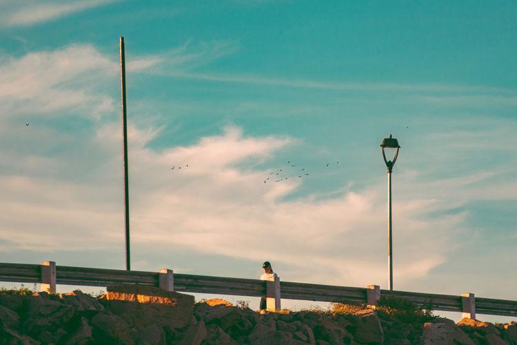 Street light on field against sky