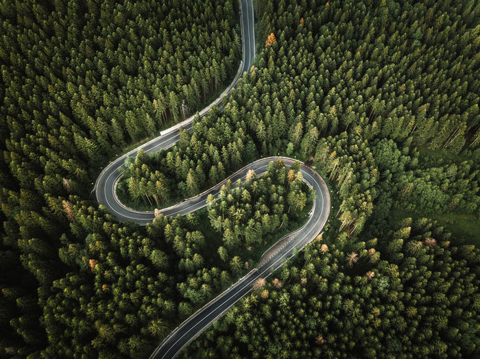 Aerial view of curved road from above trough the evergreen forest.travel, transportation concept