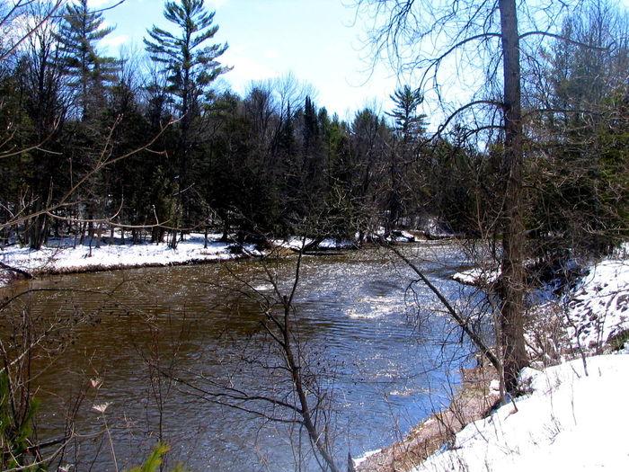 Rifle River pure michigan Pure Michigan Upnorthmichigan Alger Rifleriver