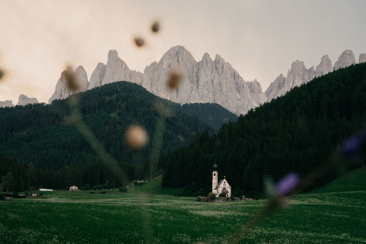 Dolomites, Italy Dolomites Italy Church Valley Santa Maddalena Mountains Mountains And Sky Sunset Close-up Mountain Plant Sky Beauty In Nature Tree Grass Mountain Range Nature Scenics - Nature Tranquility Outdoors Green Color Tranquil Scene Land Environment Idyllic Non-urban Scene Architecture Day
