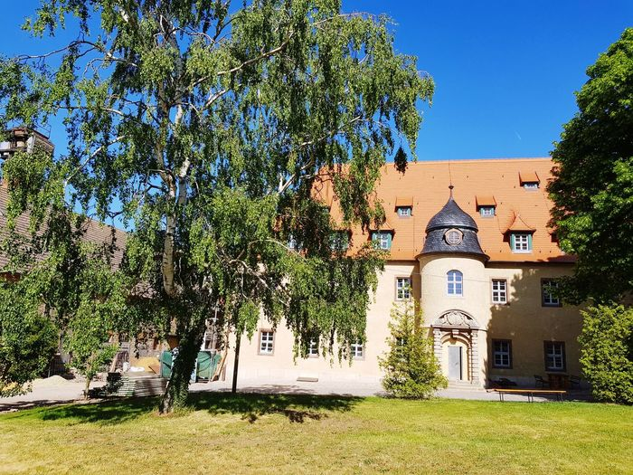 My Home is my castle Kaiserpfalz House Houses And Windows Sightseeing Tree Blue Sky Architecture Building Exterior Built Structure Historic Façade Entry Closed Door Door Handle Front Door Door Rose Window Archway History Civilization Place Of Interest