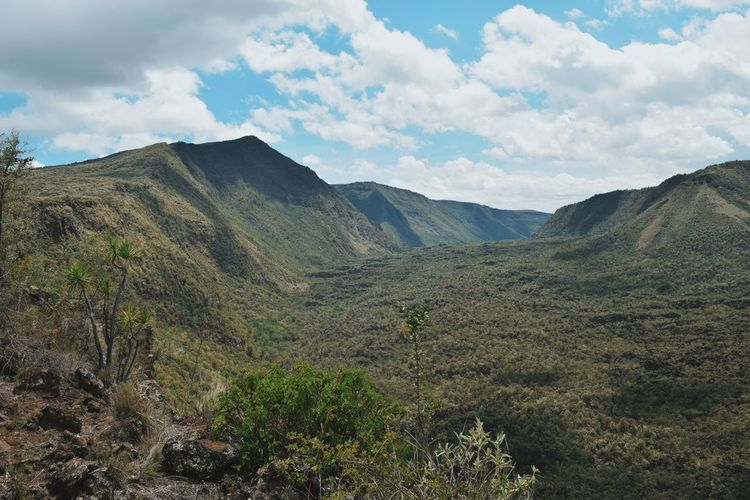 Mount Suswa, Suswa Conservancy, Kenya Mount Suswa Mountaineering Mountain Climbing Mountain View Mount Suswa Suswa Conservancy Narok Kenya Tree Mountain Sky Landscape Mountain Range Cloud - Sky Mountain Ridge Mountain Peak Valley