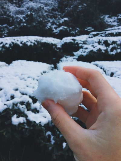 Close-Up Of Hand Holding Snowball