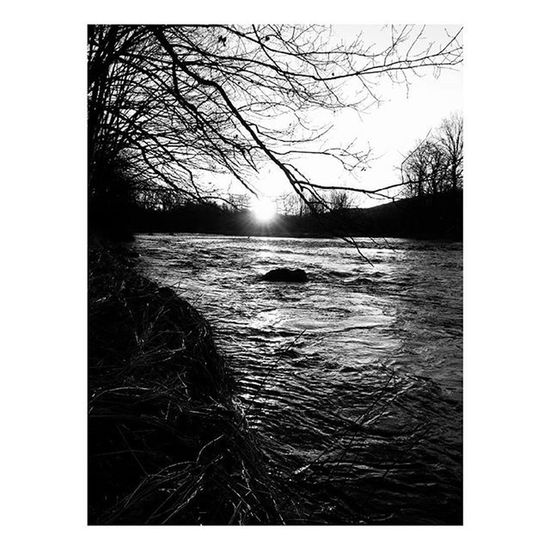 The sun is new everyday . . . . . Nature Landscape Bnw_life Bnw Bnw_captures Newengland Cold River Naturephotography Wanderlust Mobilephotography Mobilephotography_nature Photographs Naturelovers Blackandwhite Monochrome Riverside Photooftheday Dark Woods Hiking Adventure Passion Prints Society6 countryside scenery sunrise art photographer