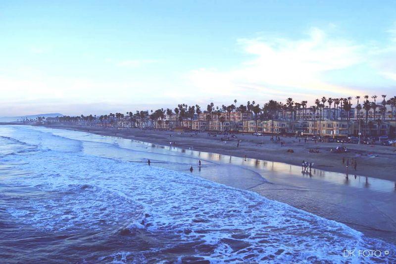 B E A C H L I F E Beach Sandiego California WestCoast Palm Trees Blue Sunset