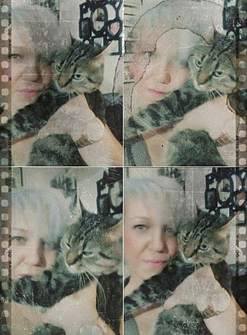 weekend with my cute cat Enjoying Life Cool Cats  Catlife AkPhotography Selfies Photo Blogger Theseandthisphotography