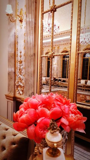 Wall Art Frame Photo Architecture Architectural Column Reception Hall Chandelier Crystals Chandelier Light Marble Floors Royal Royal Palace Royalty Wall Design And Art Marble Floor Reflections Palace Marble Flower Curtain Living Room Home Interior Domestic Room Window Red Radiator Close-up Vase Orchid Tulip Flower Head Ceiling Chandelier
