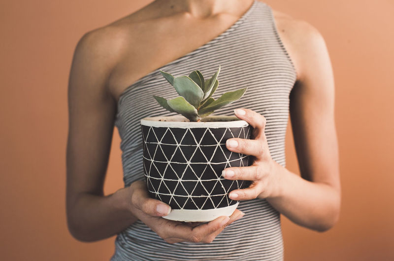 Midsection of woman holding potted plant against brown background