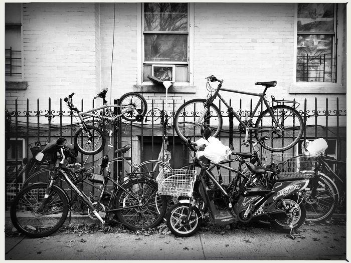 Bike Rack -