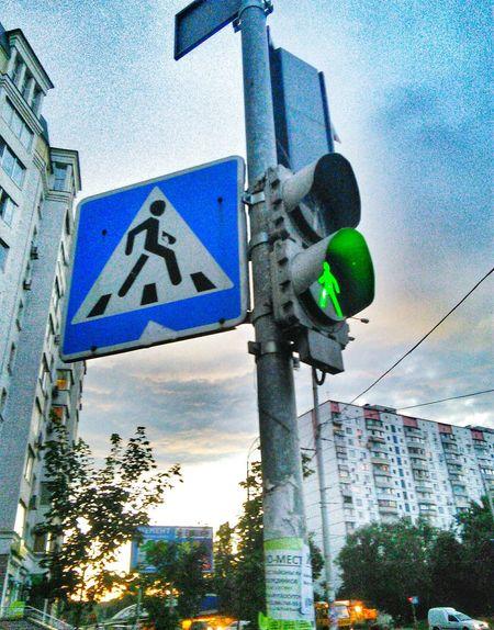 Traffic Lights светофор