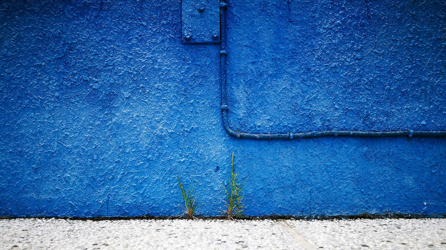 Wire On Blue Wall