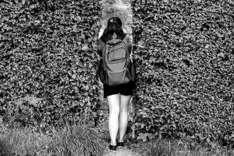 Rear View Of Woman Standing Amidst Ivy