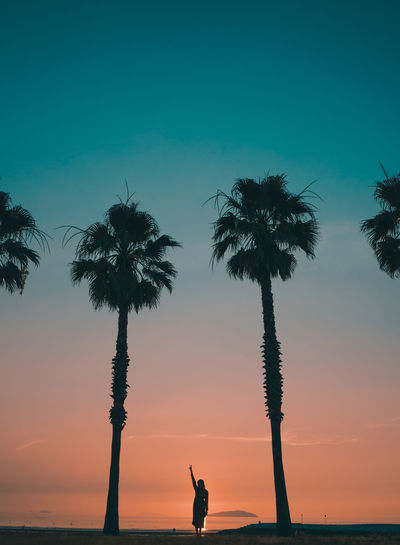 Low angle view of palm trees at beach against sky during sunset