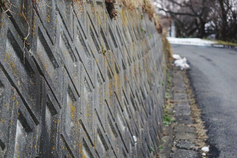 散歩 夕方 寒い Iwate Eye4photography  Eyeemphotography EyeEm Gallery EyeEm EyeEm Nature Lover EyeEmBestPics EyeEm Best Shots