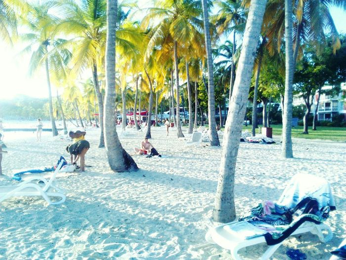 Beach Sand Summer Guadeloupe Fun Holidays