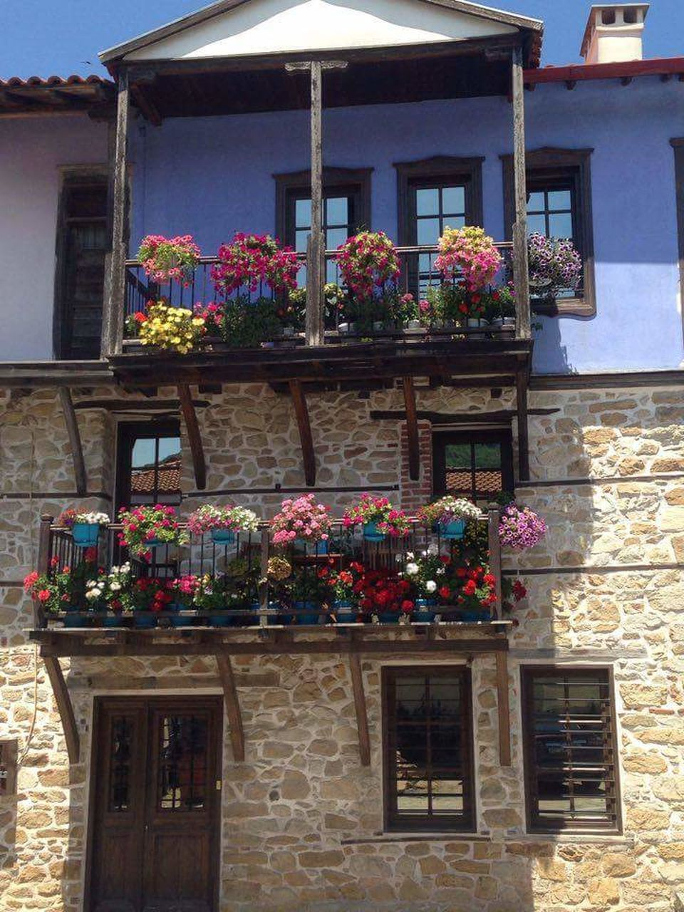 flower, potted plant, building exterior, architecture, multi colored, built structure, outdoors, plant, window, window box, day, house, growth, no people, fragility, nature, flower shop, beauty in nature, freshness