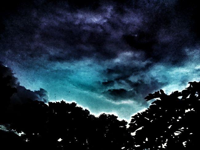 Tree Silhouette Astronomy Sky Storm Cloud Dramatic Sky Overcast Moody Sky Sky Only Cloudscape