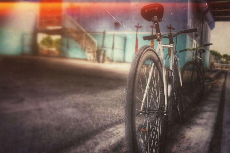 Fixie cardio Mondays Excercising Bikes bikes