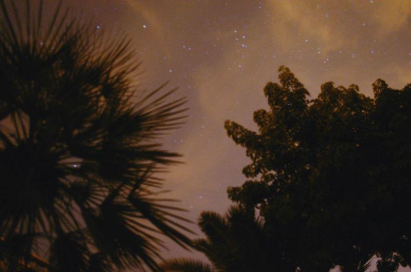 Night Oujda City, Morocco سبحانك ربي رمضان_كريم Starry Sky Beatiful Sky Home Trees