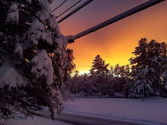 After The Storm Snow New Hampshire Winter New Hampsbire Weather Winter Wonderland Winter Trees Trees And Sky This Is Winter Sunset Winter Sunset Landscape Nature