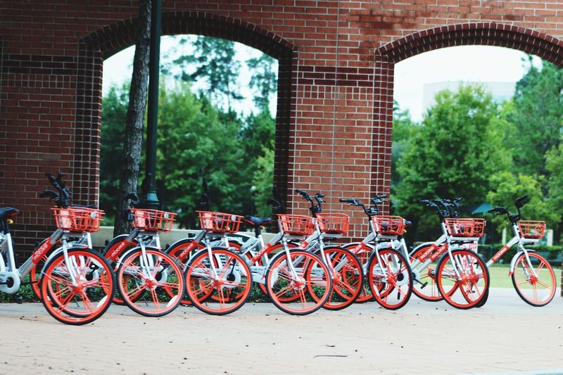The Clone Zone.. The Woodlands Texas Popular Photos EyeEm Selects EyeEm Best Shots EyeEm Gallery Canonphotography My Original Photo Roadside Shots Tree Red Bicycle Land Vehicle Stationary Brick Wall Brick