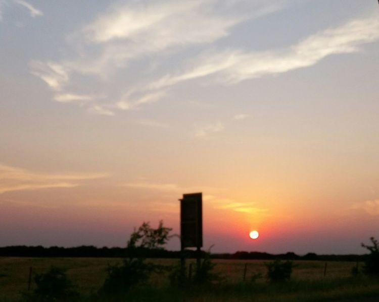 Tree Sunset Sun Silhouette Sky Cloud - Sky Grass Landscape