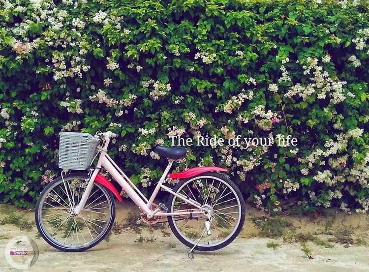 Philippines BantayanIsland  Bike Ride Pastel Power