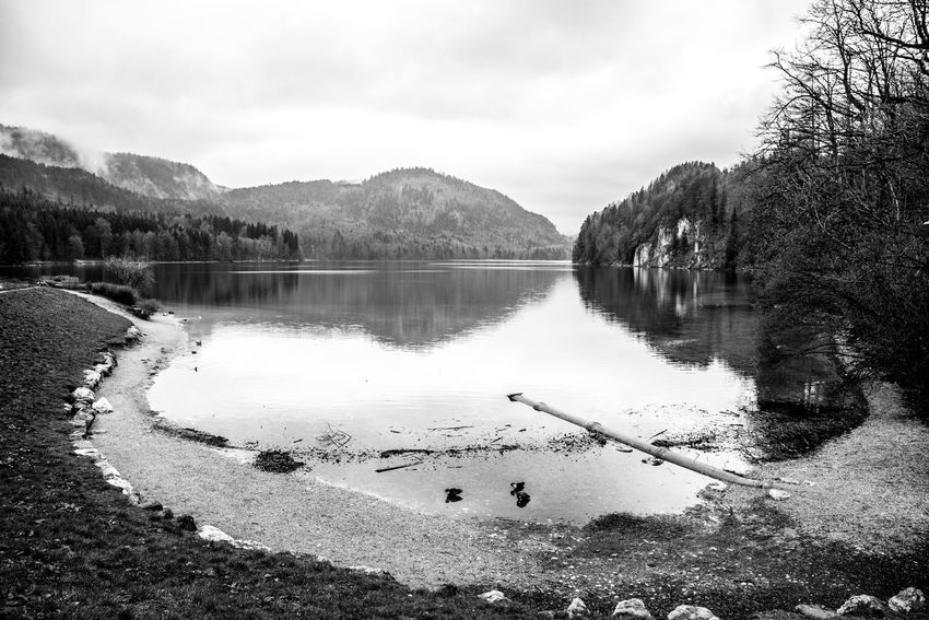 Alpsee on a cold morning. Bavaria Reflection Beauty In Nature Black And White Day Lake Mountain Nature No People Outdoors Scenics Sky Tranquil Scene Tranquility Tree Water