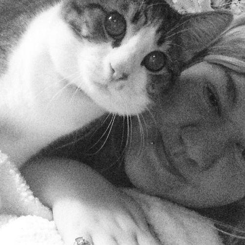 Jasper Kitty Cat Lovehim Hedrivesmecrazy lol hessomean mean kindof