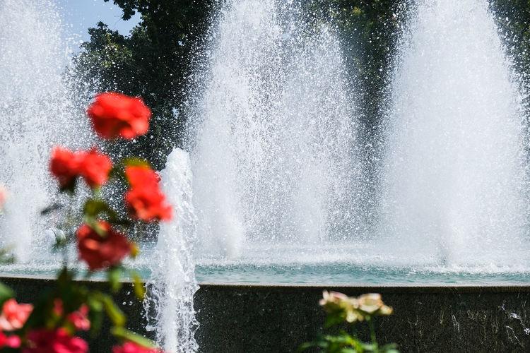 Close-up of splashing water fountain