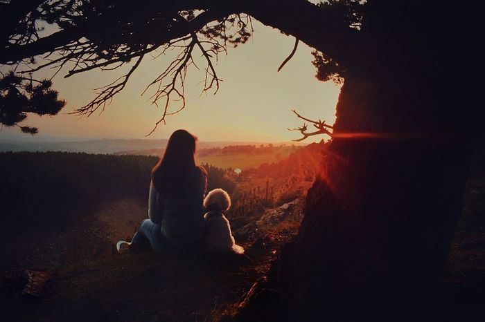 Sunset love Sitting Sky Adventure Togetherness Sunset Rear View Wales Eyeemphotography Compass NIKON D5300 Nikon_photography_ Landscape Silhouette Dog Photography Dog Love Dog Views Young Women