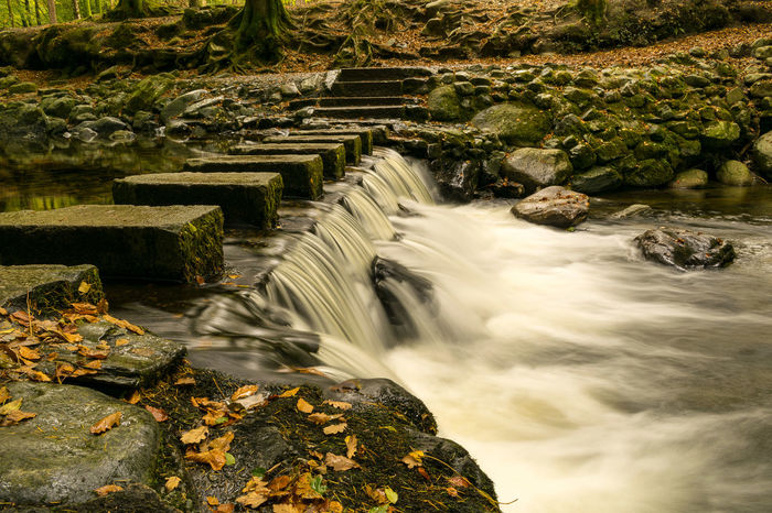 Motion Water No People Outdoors Long Exposure Nature Day Tree Waterfall Beauty In Nature Autumn2017 Autumn Colors Fall Colors Fall Beauty Leaf Yellow Autumn Northern Ireland Tollymore Forest Park Ireland Landscapes Stepping Stones