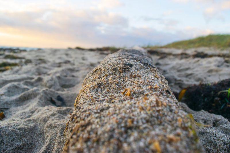 Close-up of rocks on beach
